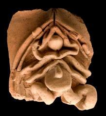 27δ. Πήλινο ρωμαϊκό αναθηματικό ομοίωμα σπλάχνων, περ. 200 π.Χ- 200 μ.Χ.